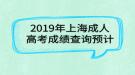 2019年上海成人高考成绩查询预计