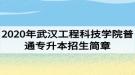 2020年武汉工程科技学院普通专升本招生简章