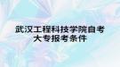 武汉工程科技学院自考大专报考条件