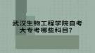 武汉生物工程学院自考大专考哪些科目?