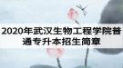 2020年武汉生物工程学院普通专升本招生简章