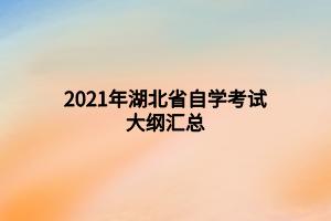 2021年湖北省自学考试大纲汇总
